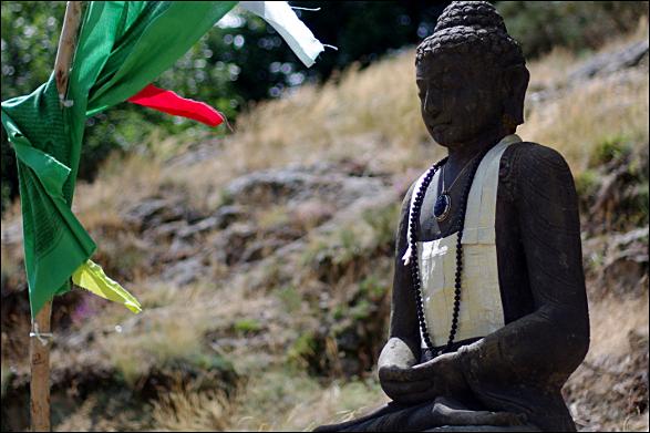 Bouddha - temple zen du Caroux